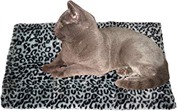 Thermal Dog Warming Bed Mat
