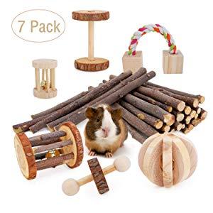 JanYoo Guinea Pig Chew Toys