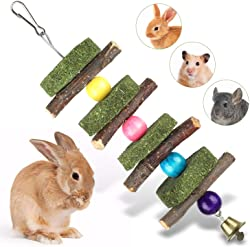 Liiyzy Rodent Chew Toys