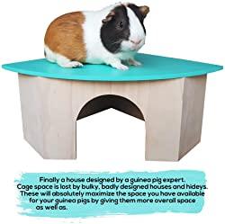 Piggies Choice the Space House