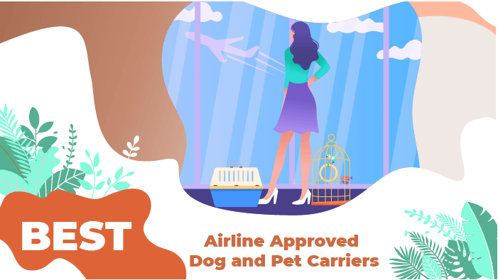 Best Airline Approved Dog and Pet Carriers