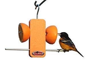 Kettle Moraine Recycled Single Oriole Orange Fruit Stick Feeder