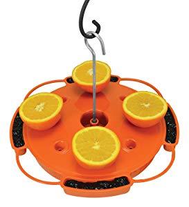 Songbird Essentials Ultimate Oriole Feeder