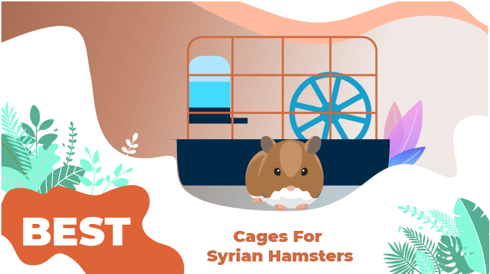 best cage syrian hamster