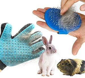 Dasksha Rabbit Grooming Kit