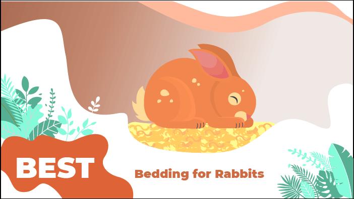 bedding rabbit