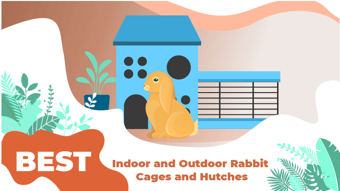 5 Best Indoor/Outdoor Rabbit Cages and Hutches 2020 - We're ... Rabbit House Plans Perfect on rabbit cages, rabbit blueprints, rabbit glass, rabbit couple, snare trap plans, rabbit hutch, rabbit making a home, rabbit playground, rabbit beauty, rabbit shit, rabbit housing, rabbit pens, rabbit fart, rabbit runs product, rabbit engineering, rabbit houses outdoor, rabbit houses and sleeping quarters, rabbit runs and houses, rabbit condo,