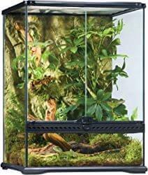 Exo Terra Rainforest Habitat Kit Medium
