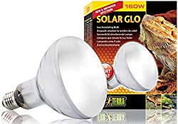 Exo Terra Solar-Glo High-Intensity UV/Heat Mercury Vapor Lamp