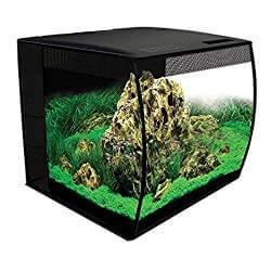 Hagen HG Fluval Flex 15-Gallon Aquarium