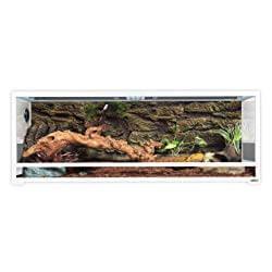Oiibo Reptiles Premium Glass Terrarium