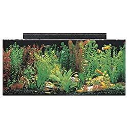 SeaClear Acrylic Aquarium Combo Set