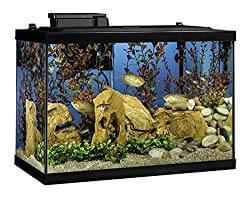 Tetra 20-Gallon Complete Aquarium Kit