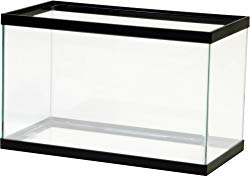 Aqua Culture 10-Gallon Empty Aquarium