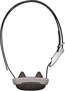 Garmin training collars
