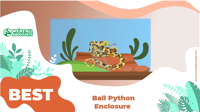 python enclosure