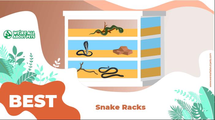 snake racks