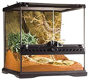 Exo Terra Glass 12x12x12 Inch Reptile Terrarium