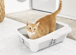 Frisco Feline the Love Litter Box with Rim