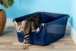 Frisco High Sided Cat Litter Box, Extra Large