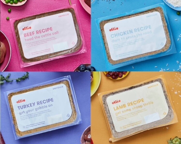 Ollie dog food recipes