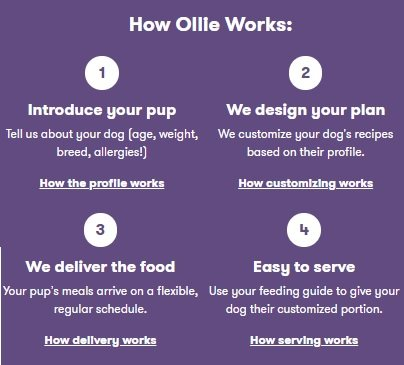How to order Ollie dog food