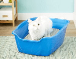 Van Ness High Sides Giant Cat Litter Pan