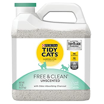 Purina Tidy with Charcoal
