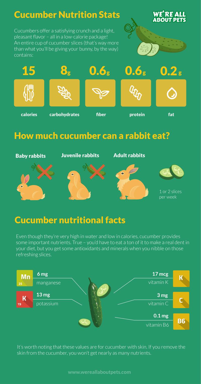 rabbit nutrition cucumber