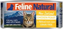 Feline Natural Beef Feast Cat Food