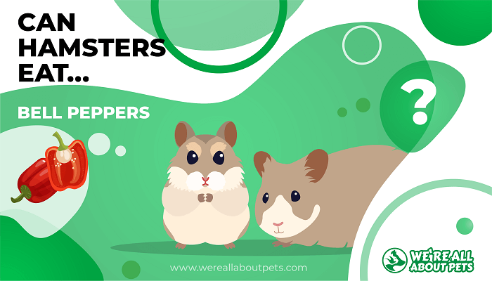 Can Hamsters Eat Bell Peppers?