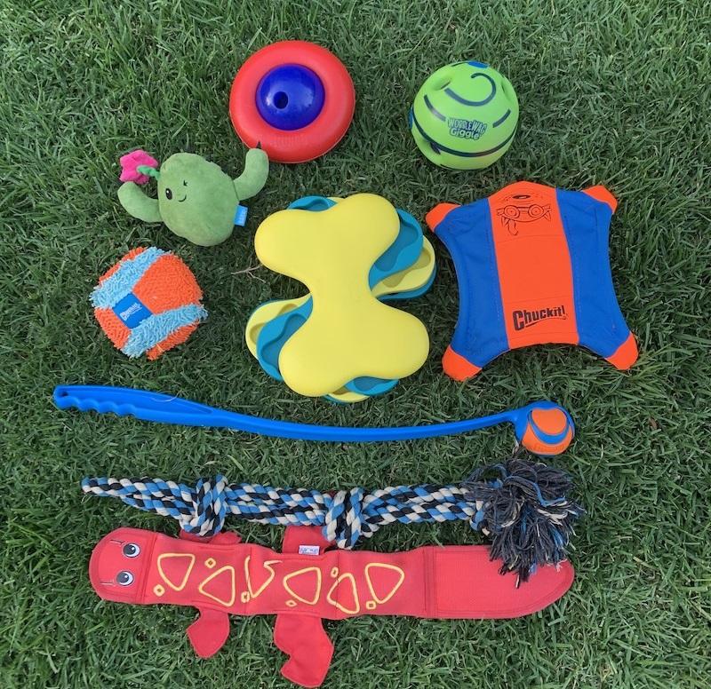 Boston Terrier dog toys