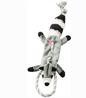 Ethical Pet - Raccoon Stuffing Free Squeaky Toy