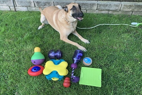 Hyper-treat-toys-scaled