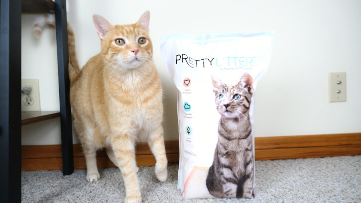Pretty Litter Review Feature
