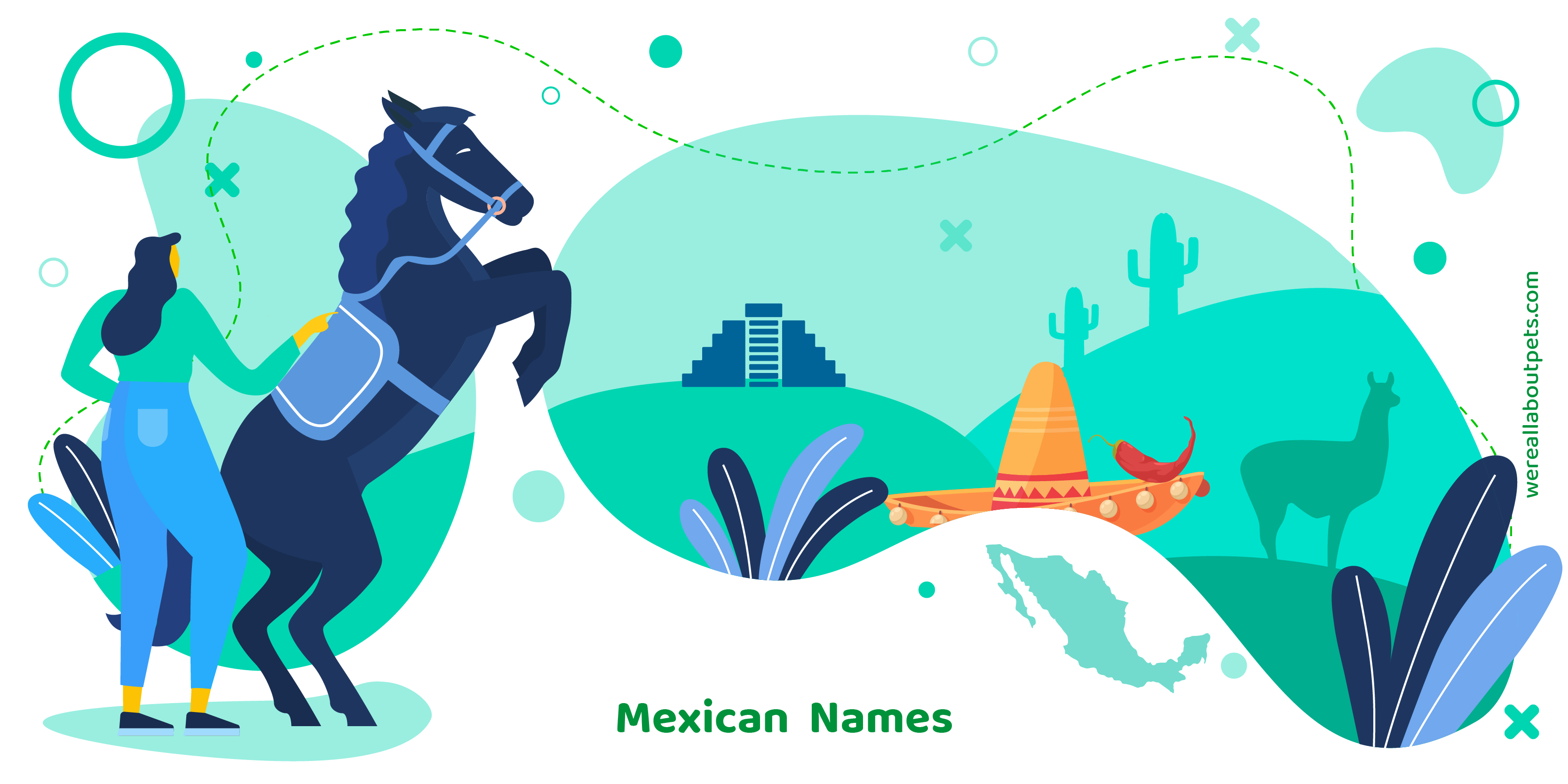 97 Mexican Horse Names We Re All About Pets
