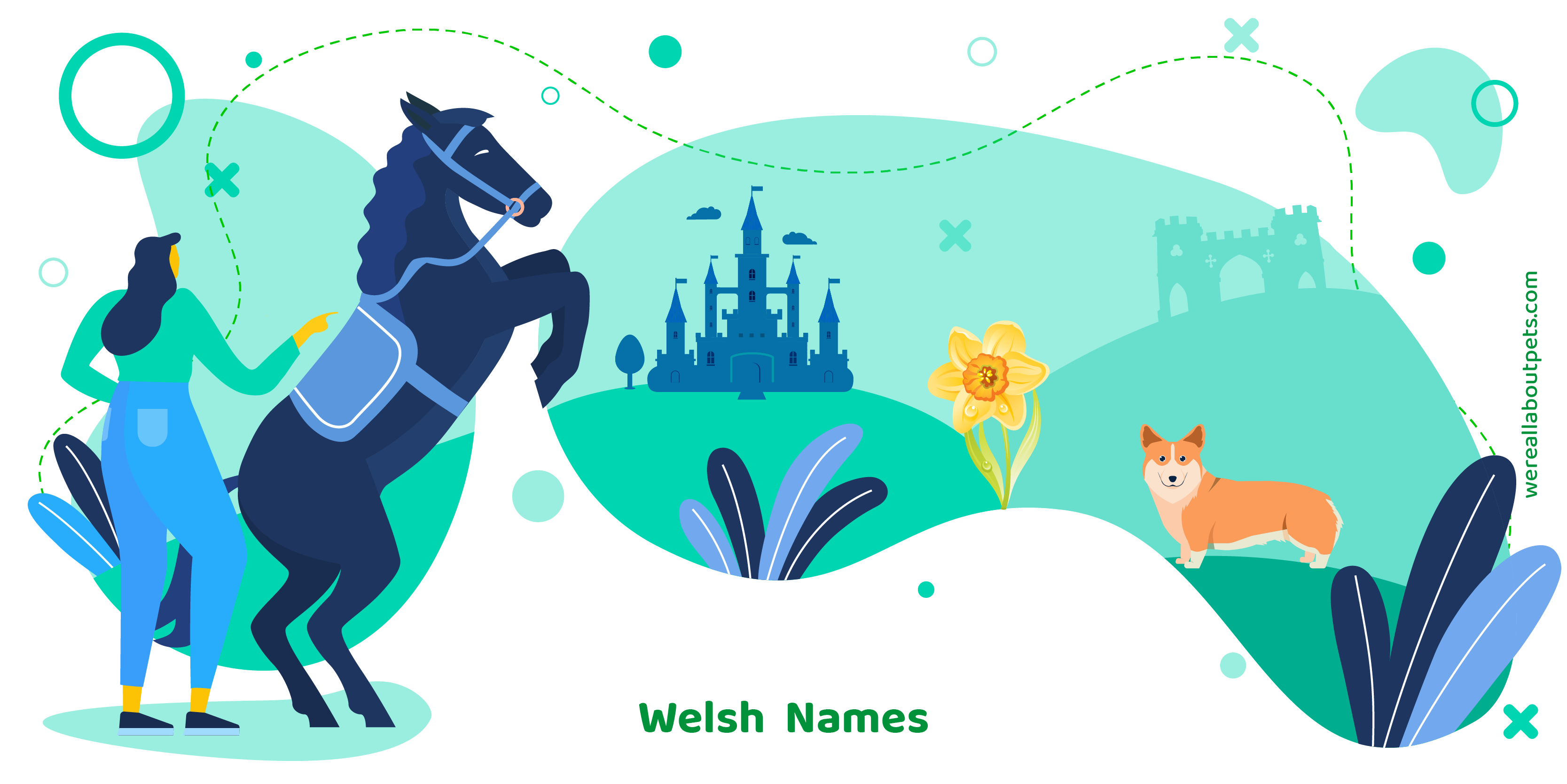 101 Welsh Horse Names We Re All About Pets