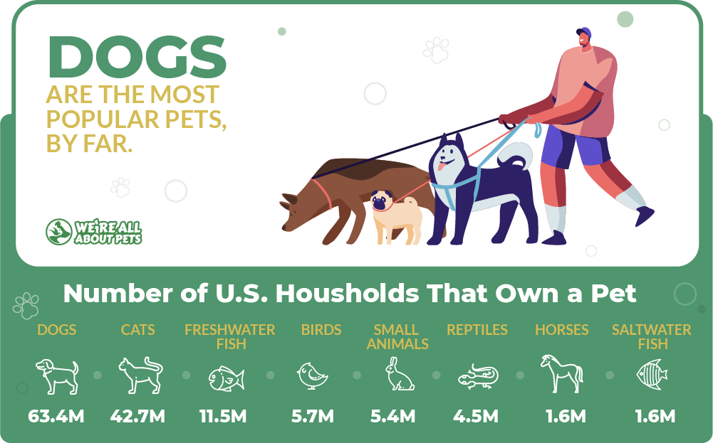 Dogs are the most popular pets