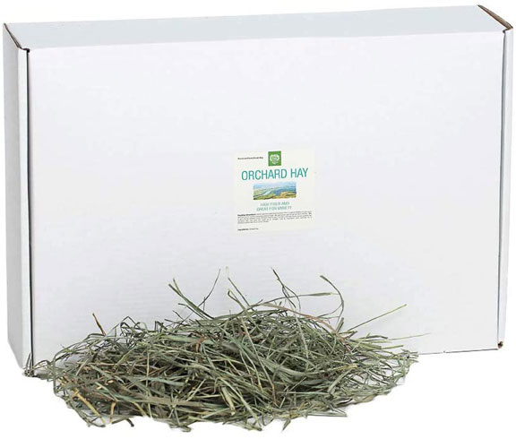Small Pet Select Orchard Grass Hay
