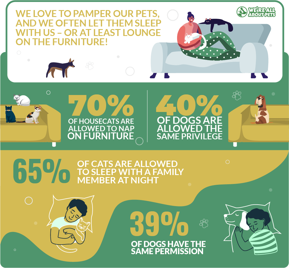 Pampering our pets statistics