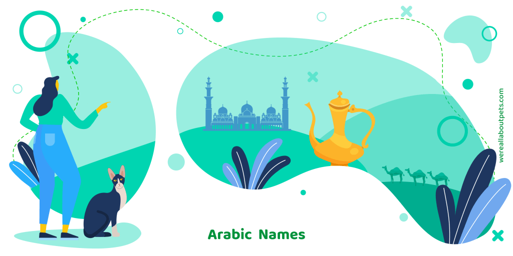 100 Arabic Cat Names We Re All About Pets