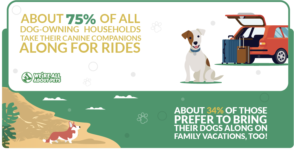 dogs and exciting adventures with their family statistics