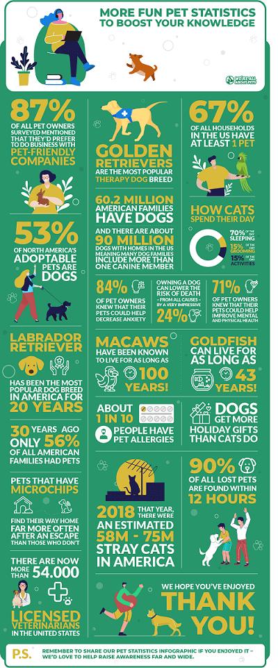 Fun pet trivia statistics infographic