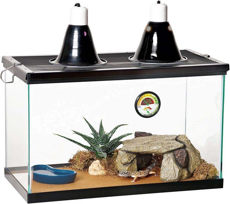Zilla Desert Reptile Terrarium Starter Kit with Light and Heat