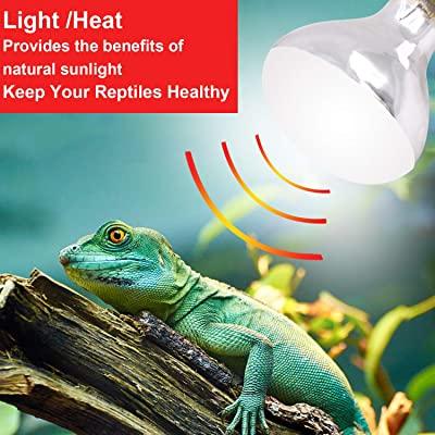 AIICIOO Reptile Light