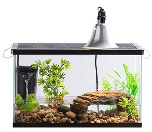 Aquarium Starter Kit Fish Reptile Turtle Habitat Tank Filter Lamp Lid