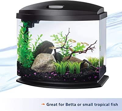 Aqueon LED MiniBow Aquarium Kit with SmartClean Technology