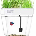 Back to the Roots Water Garden Deluxe Tank