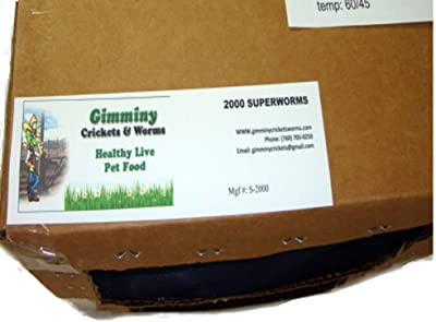 Bassett's Cricket Range Organically Grown Mealworms