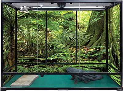 Carolina Custom Cages Terrarium